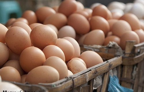 قیمت کمتر از مصوب تخم مرغ