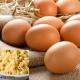 صادرات تخم مرغ به کشور های همسایه