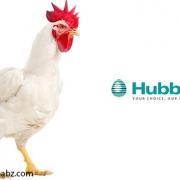 هوبارد ، کاهش اشتباهات انتخاب ژنتیکی