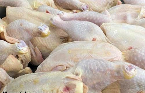 جریمه برای امتناع عرضه مرغ