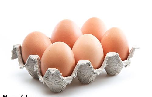 قیمت تخم مرغ در روند صعودی
