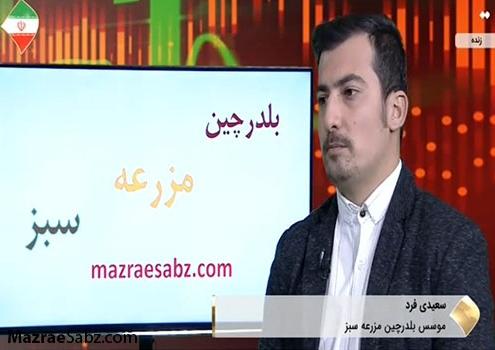 حامد سعیدی فرد در برنامه کارآفرینان
