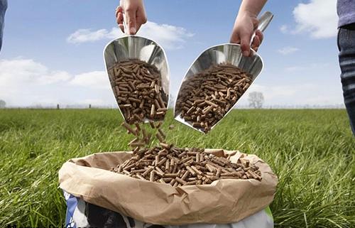 طرح ملی خوراک آماده