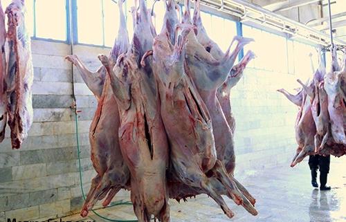 عدم کمبود گوشت و دام
