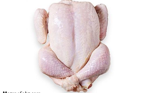 شناسنامه دار شدن مرغ